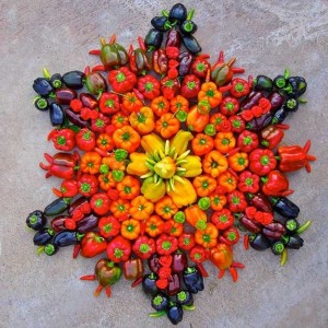 Capsicum Mandala