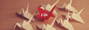 Slider-Life